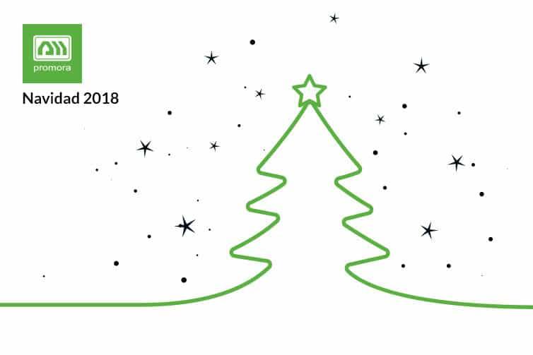 Promora Navidad 2018