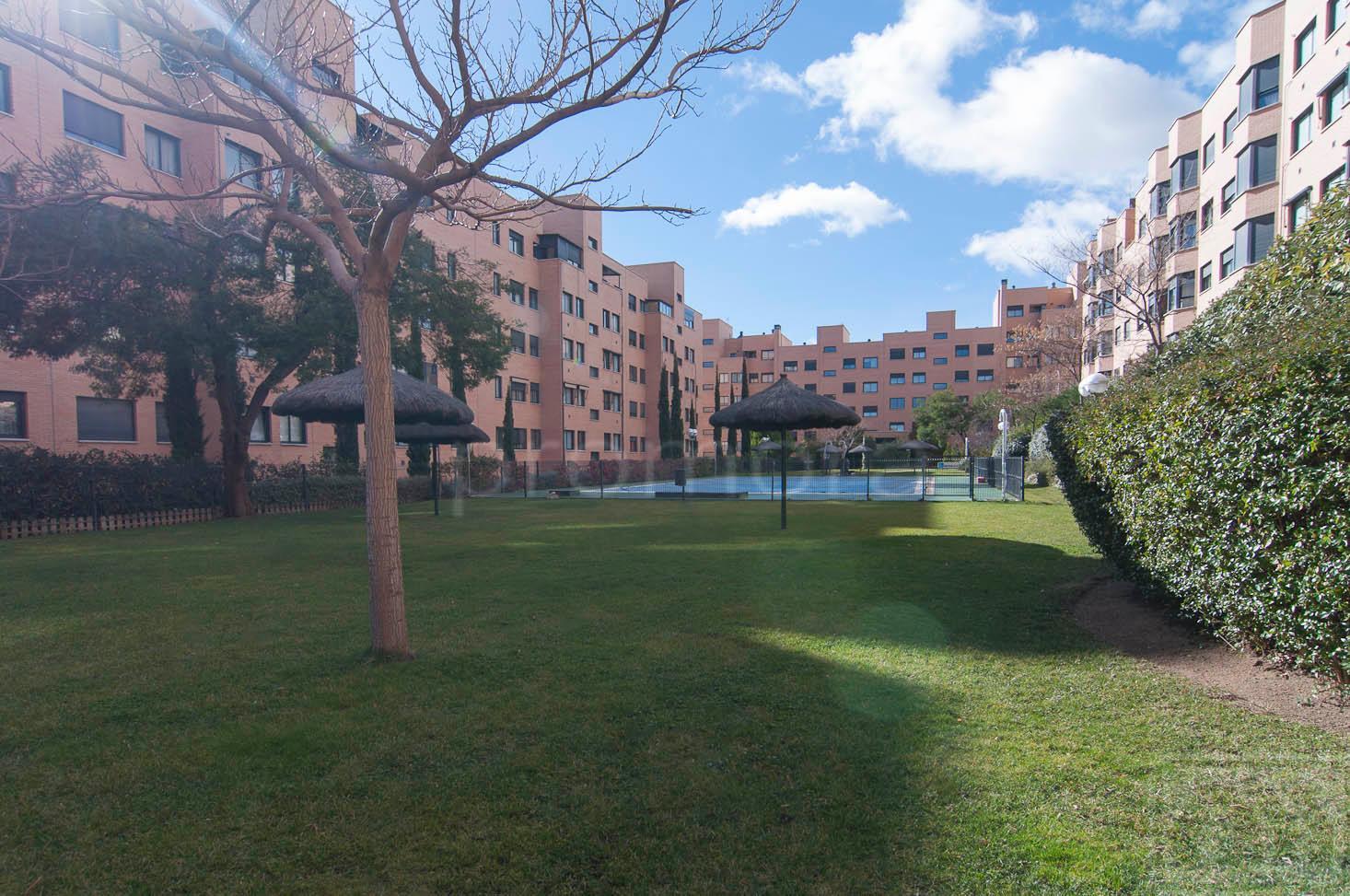Pisos en alquiler sanchinarro stunning piso en calle de capiscol with pisos en alquiler - Pisos en venta en sanchinarro ...